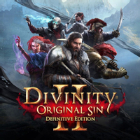 Divinity: Original Sin 2 Steam