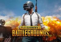 Playerunknown's Battlegrounds Steam Gift