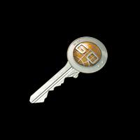 CS:GO Kasası Anahtarı