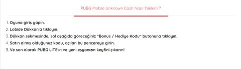 PUBG Mobile / PUBG MOBİLE Lite