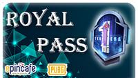 Royale Pass Paketi (M1)